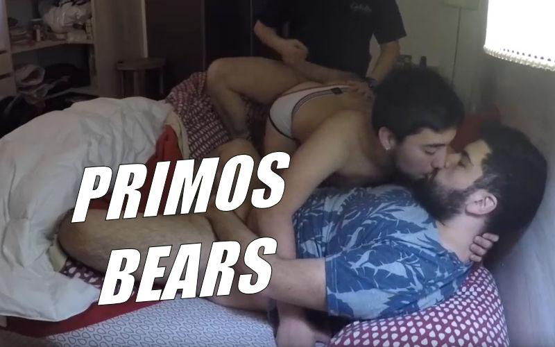 Video amador de primos ursos se pegando