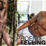Phoenix Fellington na punheta!