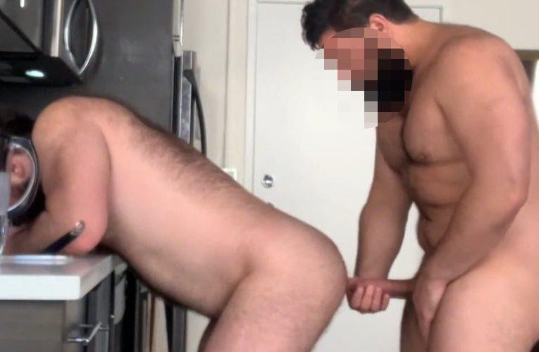 Ursis fodendo na cozinha
