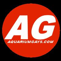 Aquarium Gays: Nudes | Dotados | Videos de sexo gay | Homens pelados